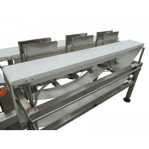 4-Sort Dual Lane Sorting Conveyor